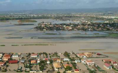 Siembra soja, cosecha inundación